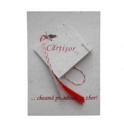 Cartisor file nescrise